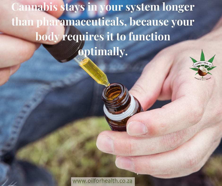 Cannabis assists your system to function optimally.
