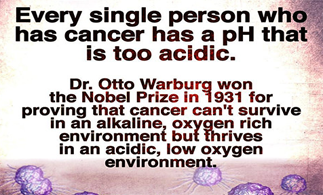 Why the fuss about PH levels in your body?