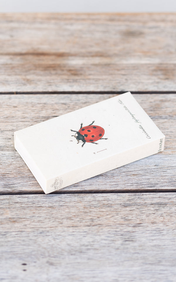 Little Lady Bug Matches