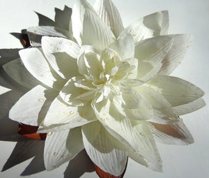 HUGE Water Lily Lotus Flower Hair Clip