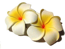 Load image into Gallery viewer, White 3 inch Foam Tropical Plumeria Hair Flower Clip Accessory - PAIR