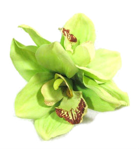 Beautiful Green Orchid Hair Flower Clip