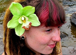 Gorgeous Lime Green Cymbidium Orchid Hair Flower Clip