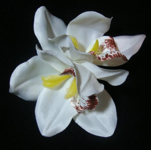 White Cymbidium Orchid Flower Hair Clip
