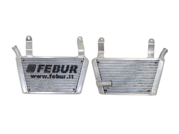 FEBUR KTM RC 390 Additional Racing Water Radiator (With silicon hoses)
