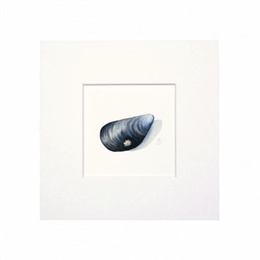 MUSSEL MINI PRINT WITH FRAME