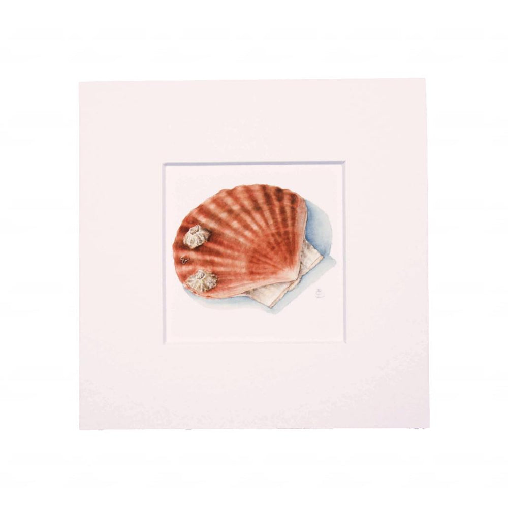 SCALLOP MINI PRINT WITH FRAME
