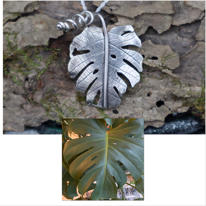 A photo of a real monstera deliciosa leaf that I made a sterling silver leaf to exactly replicate so that it can be worn on a necklace.