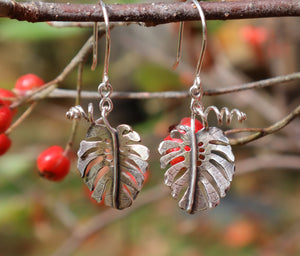 A pair of sterling silver handmade mosntera deliciosa dangle earrings shown on a tree branch with bright red berries in the background.