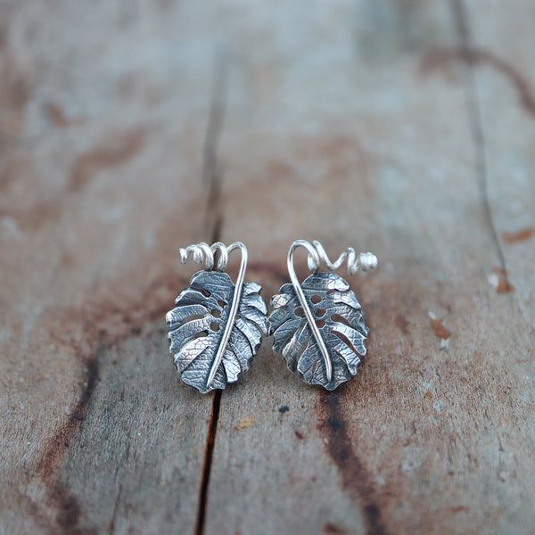 Handmade sterling silver monstera deliciosa stud earrings. They are about 1/2 inch tall and have twisty little stems at the top of the leaf. They are shown on a piece of light brown wood.