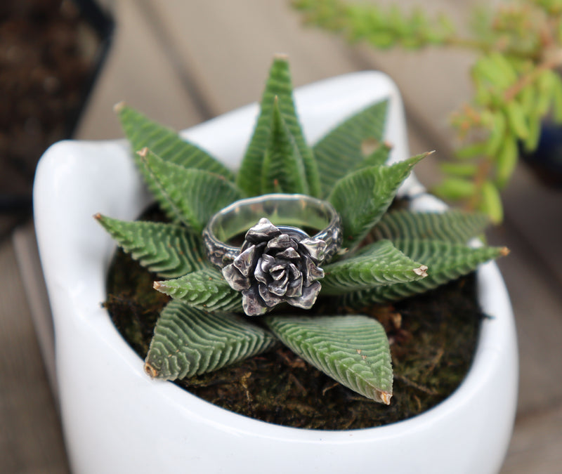 A sterling silver rose ring is shown on top of a live succulent plant in a white owl pot.