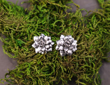 Load image into Gallery viewer, A pair of sterling silver succulent plant earrings are shown on top of a piece of dark green real moss.