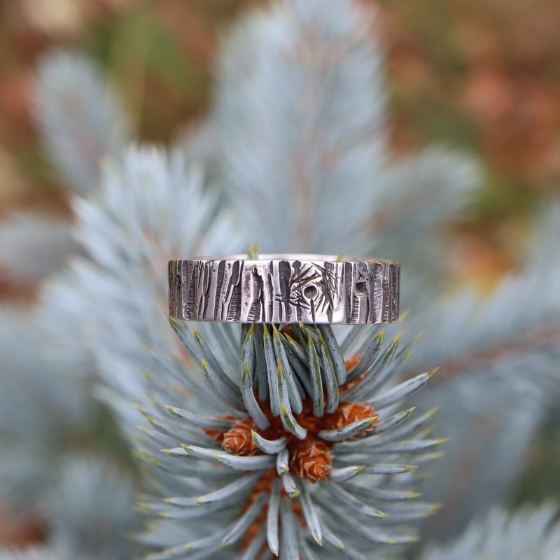 A tree bark patterned silver ring pictured on top of an evergreen tree. The ring is made by The Striped Cat Metalworks.
