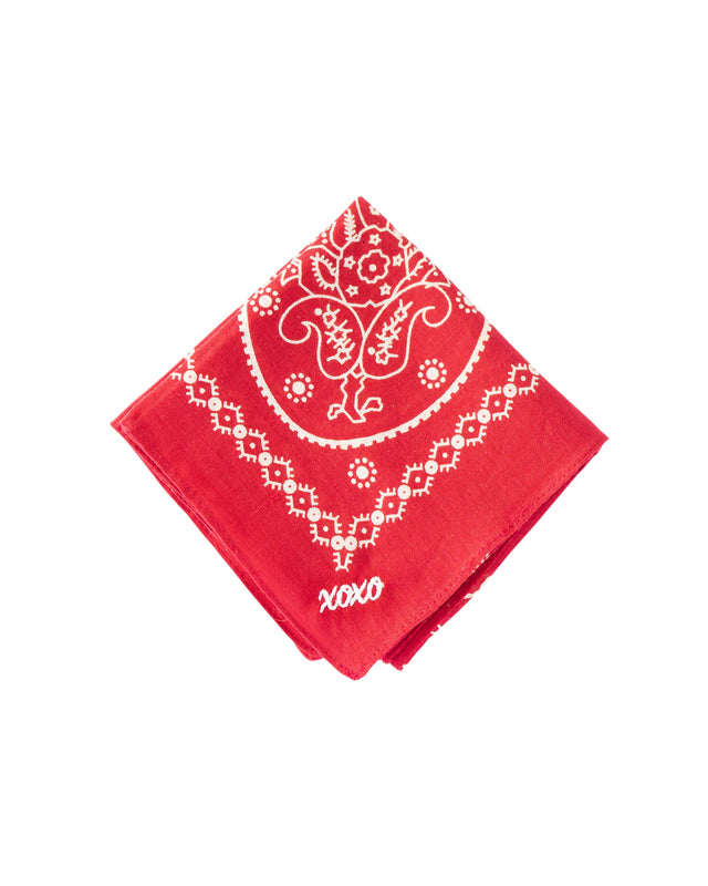 Load image into Gallery viewer, Xoxo Embroidered Handkerchief