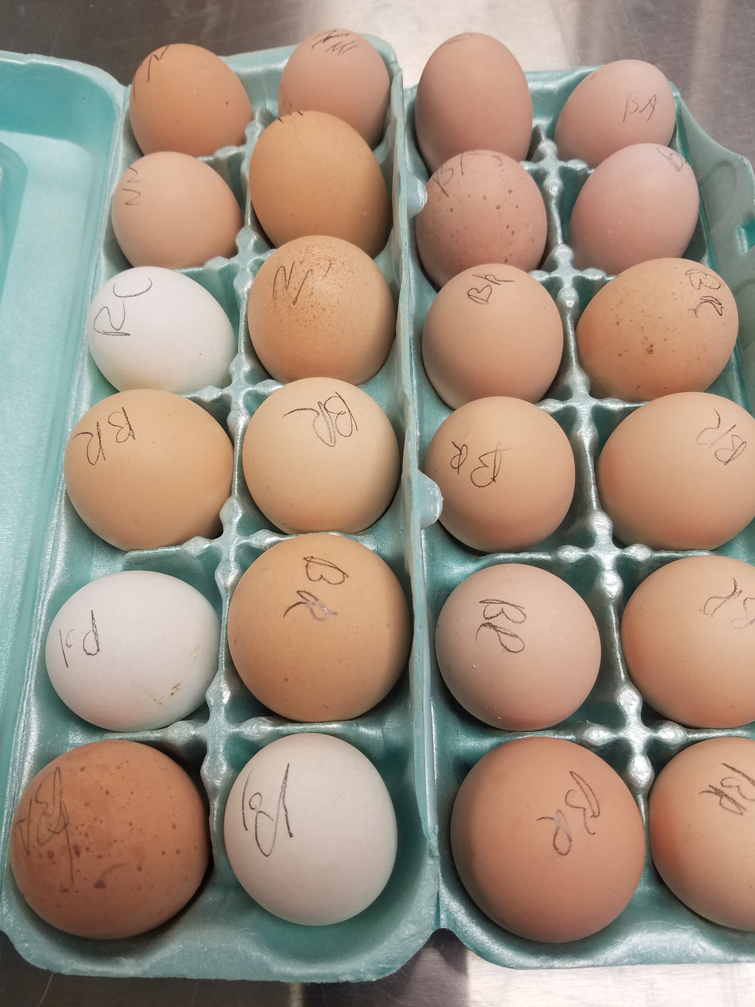 Assorted Largefowl hatching eggs per dozen post paid