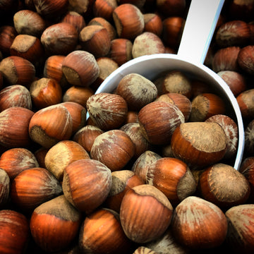 We're nutty about Hazelnuts
