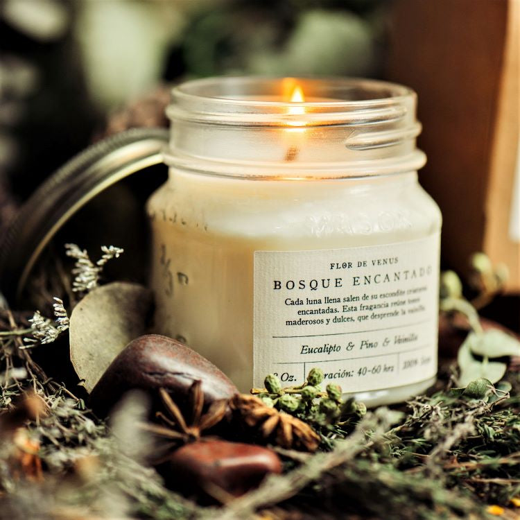 8oz | Soy Candle | Bosque Encantado | Enchanted Forest - The Wolf In Me