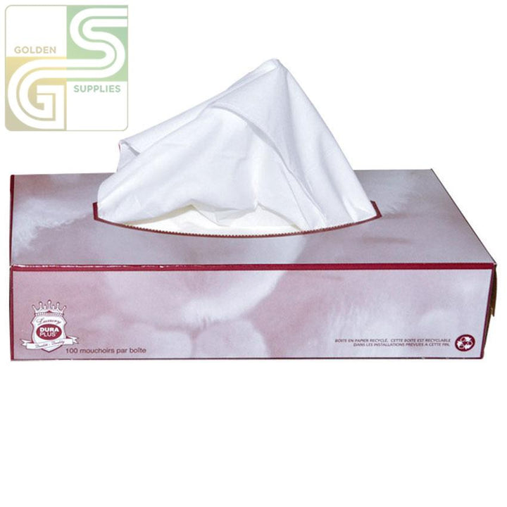 Facial Tissue - 2 Ply - 100 Sheets x 1 Box=100 Sheets-Golden Supplies Ltd