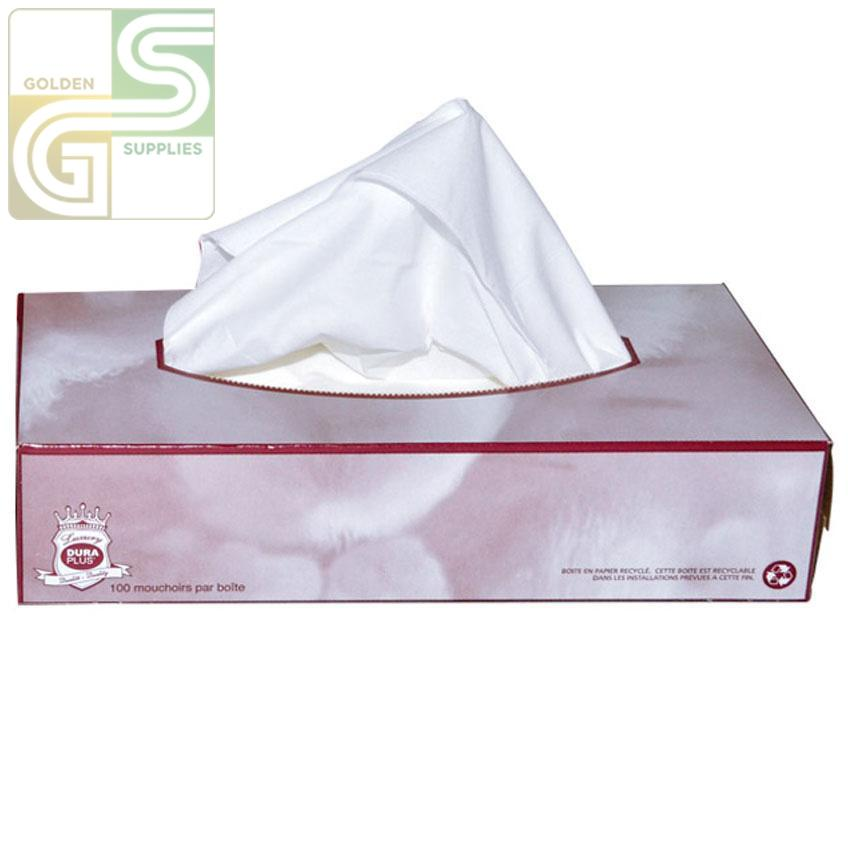 Facial Tissue - 2 Ply - 100 Sheets x 30 Box=3000 Sheets-Golden Supplies Ltd