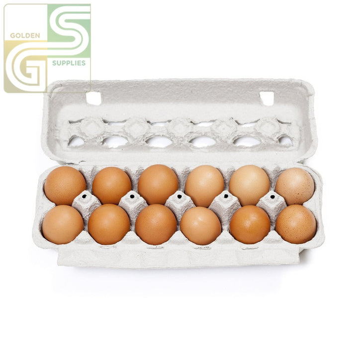 Large Brown Eggs 12pcs x 1 Box-Golden Supplies Ltd