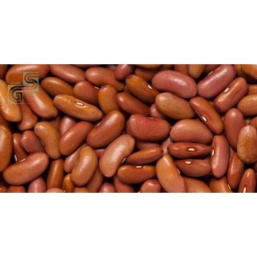 Light Red Kidney Beans 55 Lbs-Golden Supplies Ltd