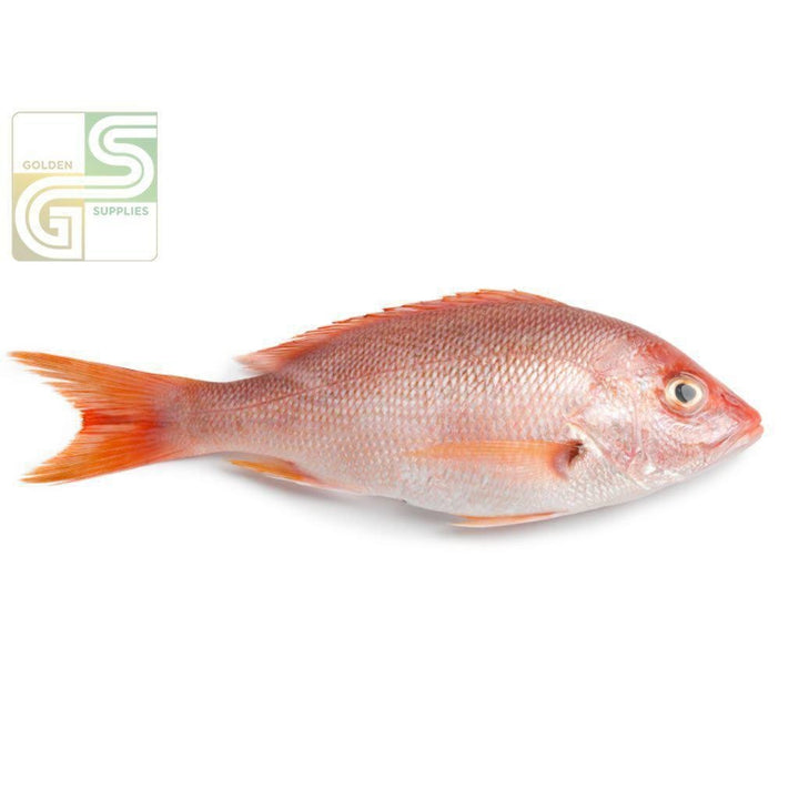 Red Snapper 1/2-3/4 Cln 3.17 Kg-Golden Supplies Ltd
