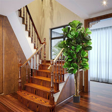 Load image into Gallery viewer, Fiddle Leaf Fig Tree Plant