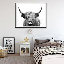 Load image into Gallery viewer, Highland Cow Canvas