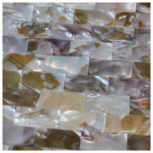 Mother of Pearl  Colorful Shell Mosaic Wall Tile