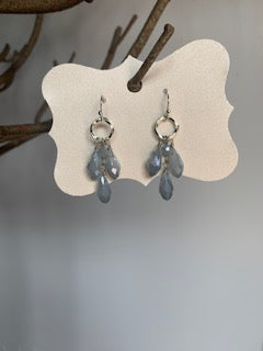 Silver with Blue Stone Earrings - Gift Shop Wrought 'n Apples