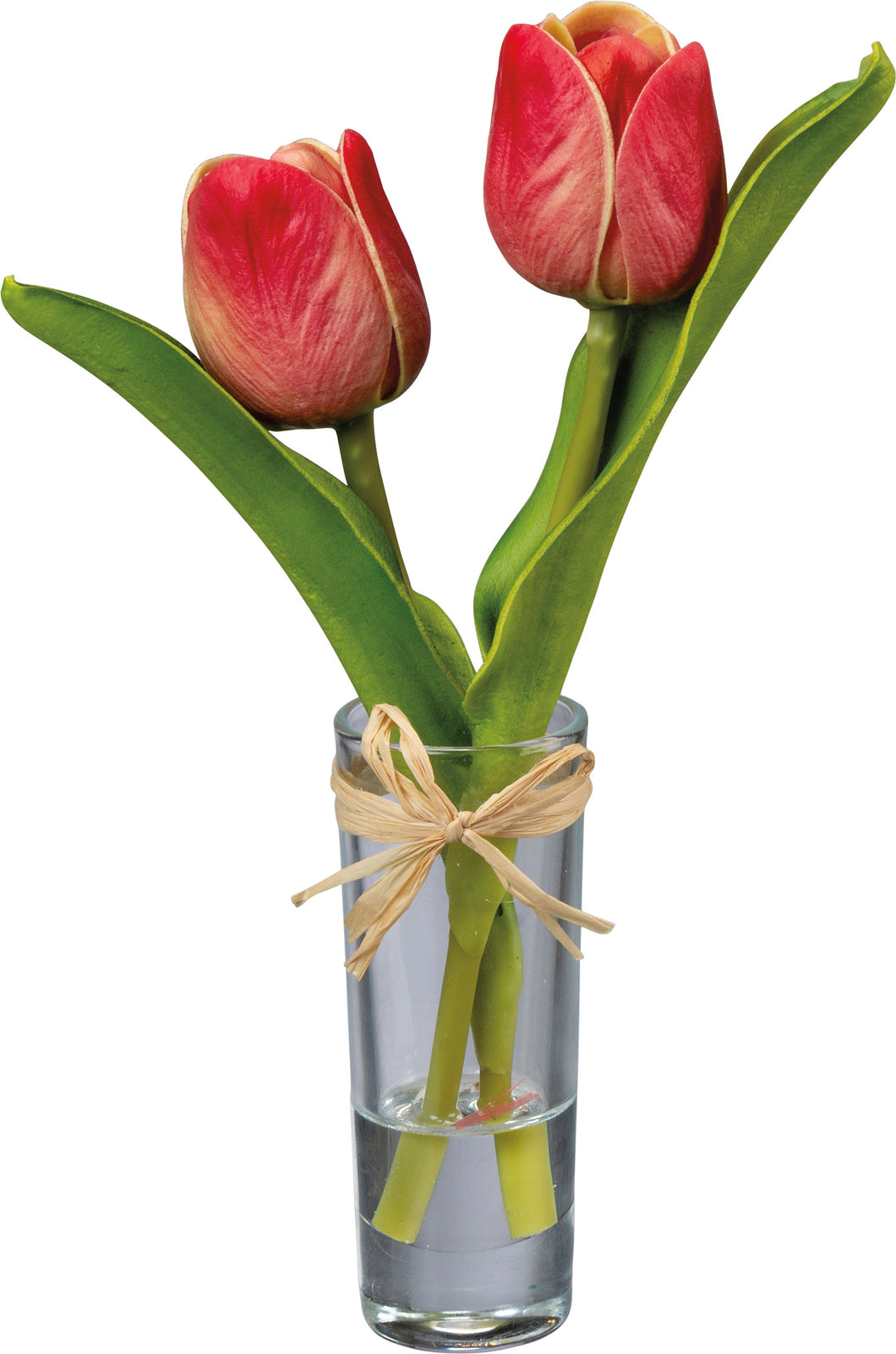 Mini Red Tulip Vase