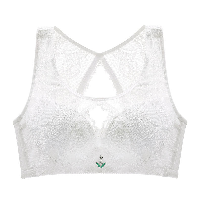 Women's Anti Sagging Sexy Lace Busty Bras