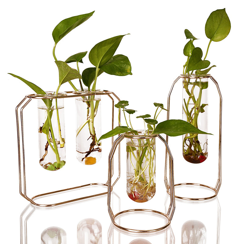 Bud Glass Vase Plant Stand Decorative Metal Garden Patio Standing Flower Pot Rack Display With Modern Water Planter
