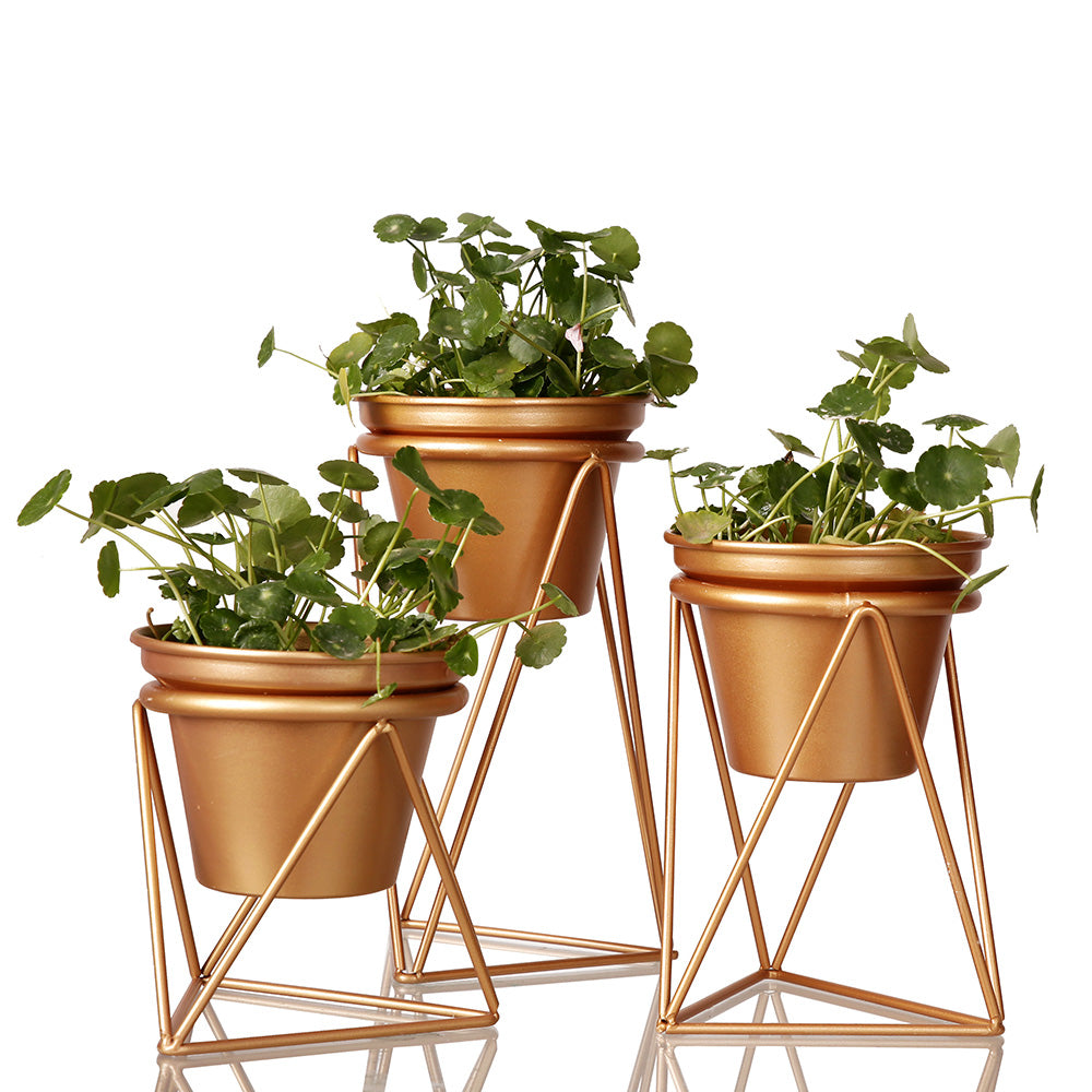 3pcs Gold Flowerpot Garden Planter Stainless Steel Flower/Plant Succulents Container Bonsai Pot Home Table Decoration Ornament