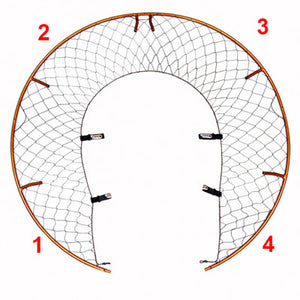 Eclipse Hoop Sections