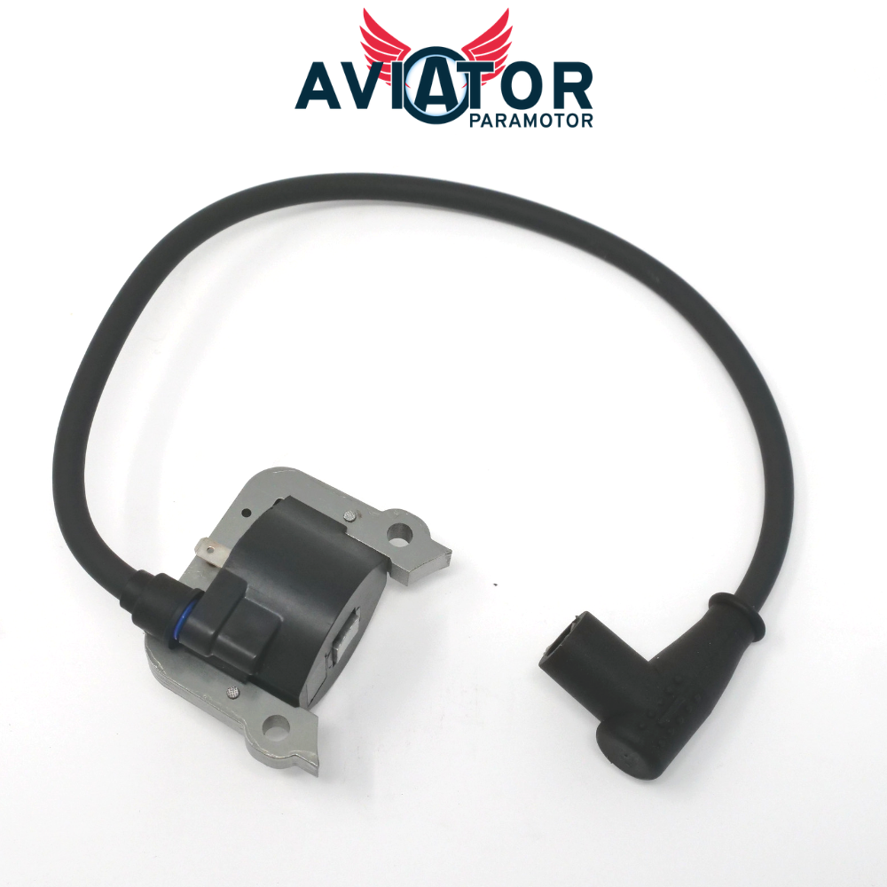 Electronic Ignition Coil with Spark Plug Cap for Atom 80