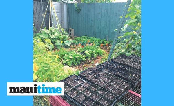 Growing Hope: During a pandemic, gardening takes on new meaning