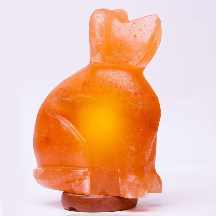 Dog Himalayan Salt Lamp - Himalayan Trading Co. Himalayan Salt Lamp Himalayan Pink Salt