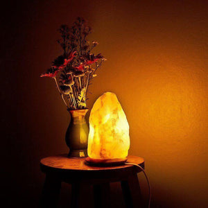 Original Himalayan Salt Lamp (Medium) (Set of 6) - Himalayan Trading Co. Himalayan Salt Lamp Himalayan Pink Salt