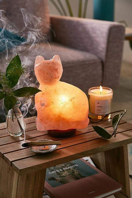 Purrfect Cat Salt Lamp - Himalayan Trading Co. Himalayan Salt Lamp Himalayan Pink Salt