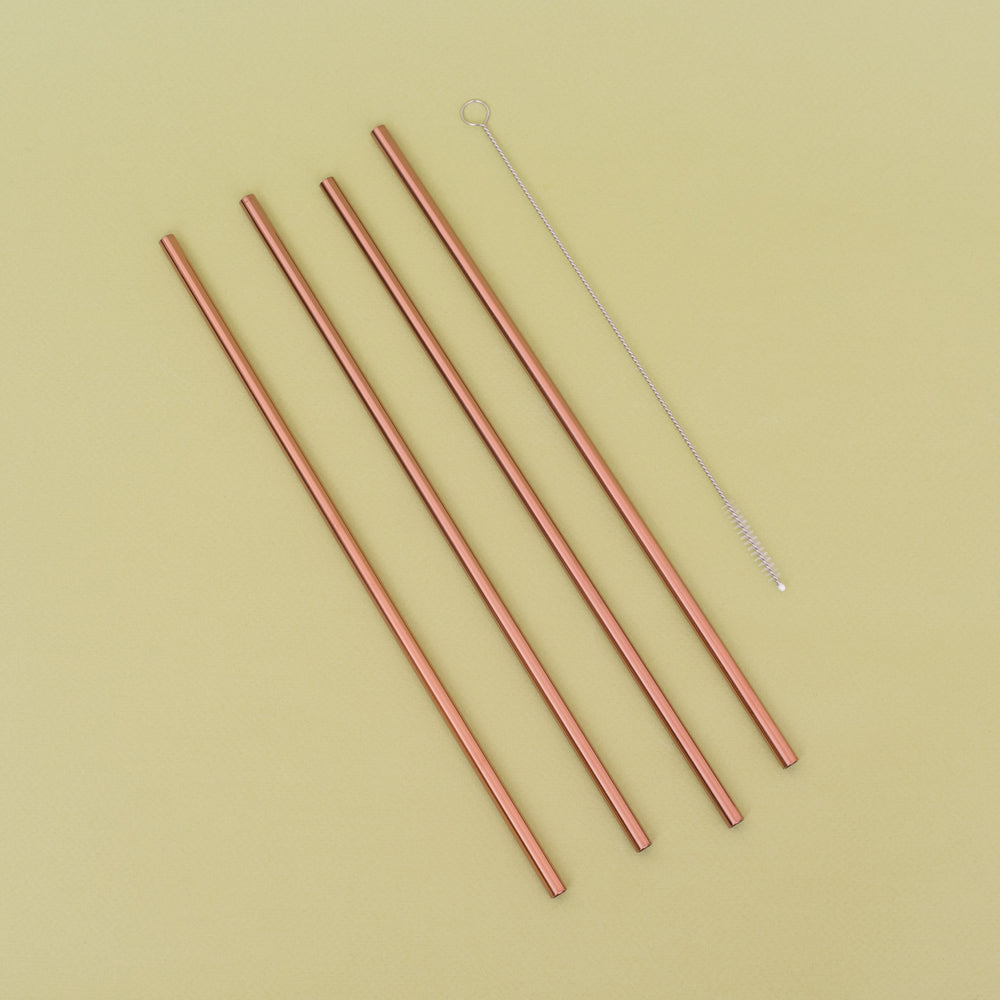 Metal Straws with Cleaner Brush - Set of 4