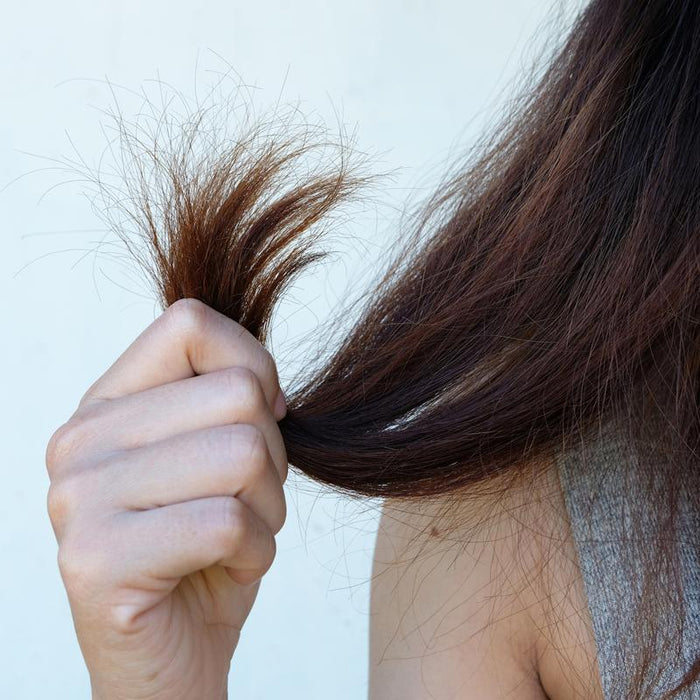 Dealing with Breakage, Damage, and Hair Loss