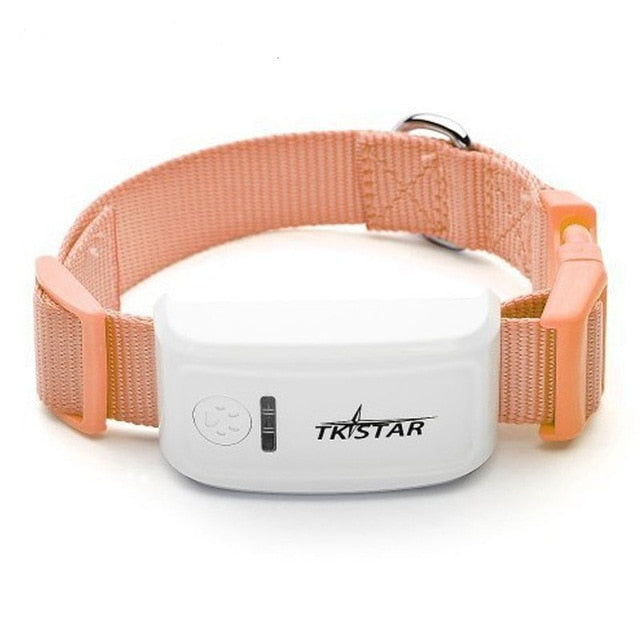 Real Time Pet GPS Tracker For Cats