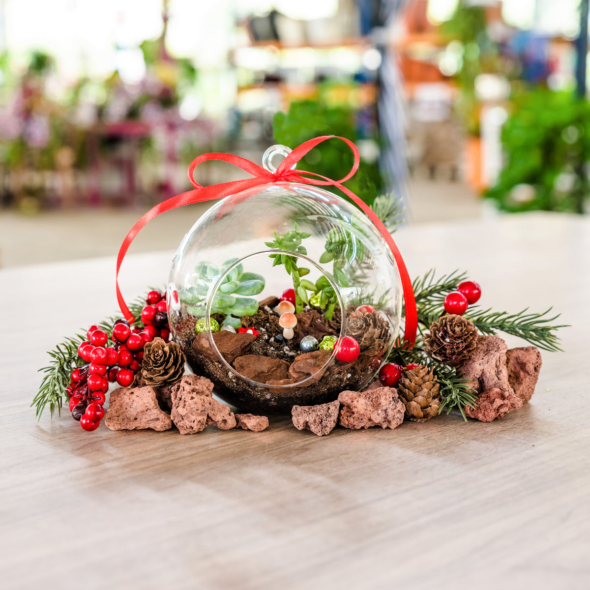 Christmas Bauble Terrarium Kit