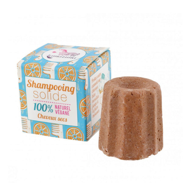 SHAMPOING SOLIDE - CHEVEUX SECS
