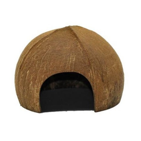 qtoys coconut play house