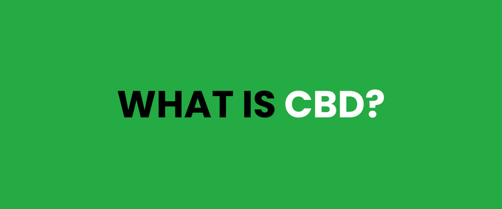 What is CBD Oil and Hemp Oil