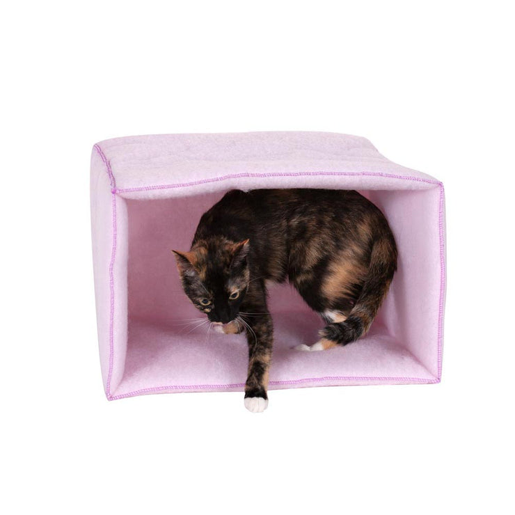 Cute Pink Cat Tunnel