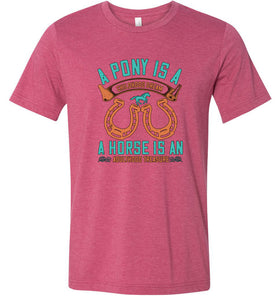 A Pony is a Childhood Dream Adult Tee