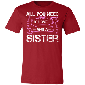 All You Need is Love and a Sister Adult Tee
